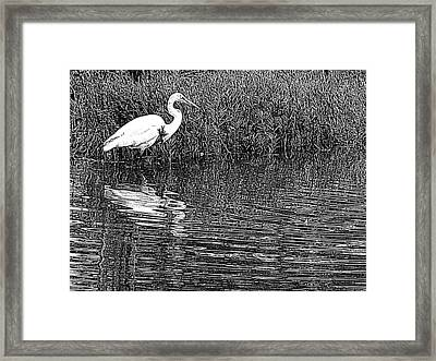 Framed Print featuring the photograph Egret In The Thicket by Suzy Piatt