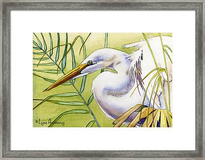 Egret Framed Print by Lyse Anthony