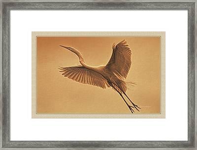 Egret Sepia Framed Print by Deborah Benoit