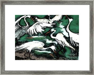 Egrets Framed Print by Cecily Mitchell