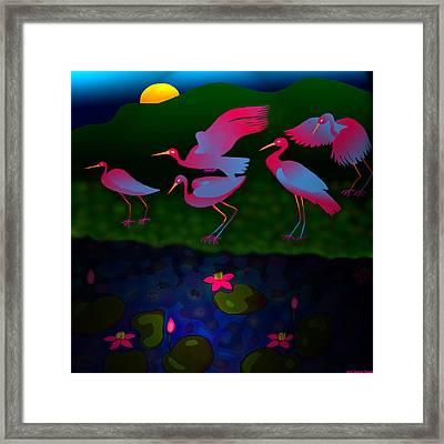 Egrets Framed Print