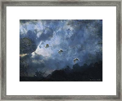 Egrets Morning Fly Framed Print by J Larry Walker