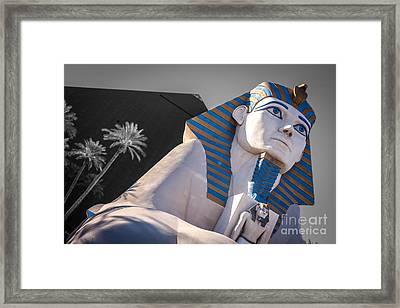 Egypt Or Usa  Framed Print