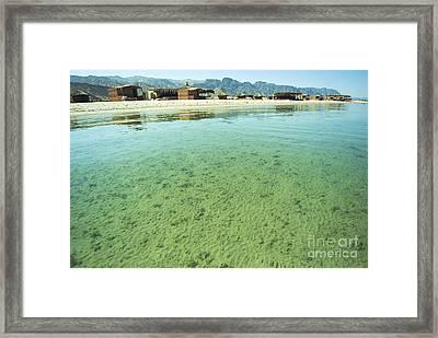 Egypt Sinai Beach Resort Framed Print by Shay Fogelman