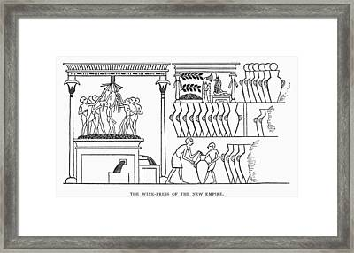 Egypt Winemaking Framed Print