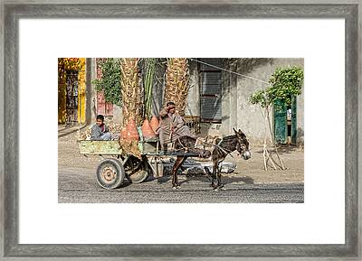 Egyptian Donkey And Cart Framed Print by Linda Phelps