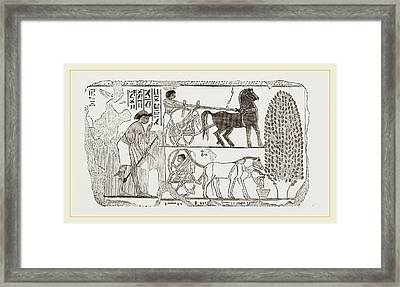 Egyptian Painting Framed Print by Litz Collection
