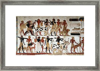 Egyptian Wall Painting Of Temple Of Beit El-wali Framed Print by RicardMN Photography