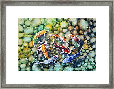 Eight Koi Fish Playing With Bubbles Framed Print by Zaira Dzhaubaeva