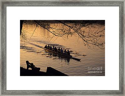 Eight Man Crew Rowing Along Montlake Cut  Framed Print