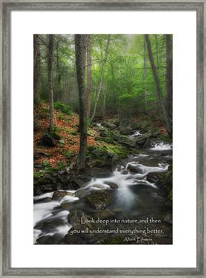 Look Deep Into Nature Framed Print by Bill Wakeley