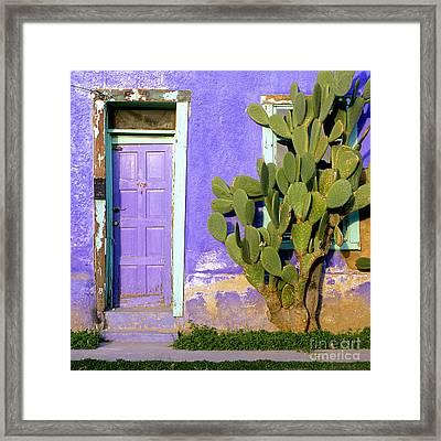 El Barrio Framed Print by Timm Chapman