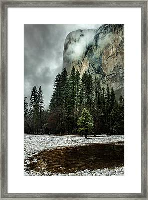 El Capitan Seen From The Valley Meadows Framed Print by Tom Norring