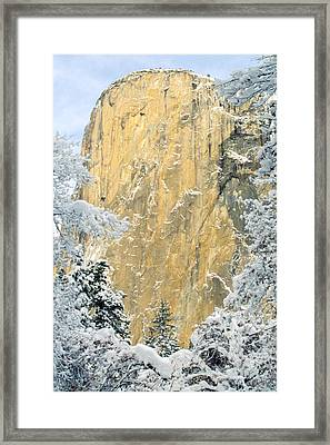El Capitan With Snowy Trees Framed Print