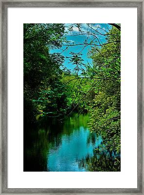 Framed Print featuring the photograph El Dorado Park Lake View by Joseph Hollingsworth