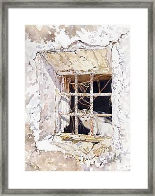 El Gato Framed Print by Margaret Merry