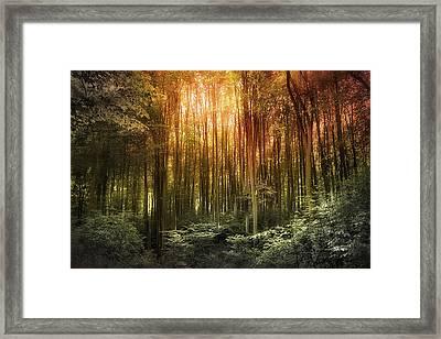 El Paradiso Mio - Awakening Spiritual Landscape Framed Print