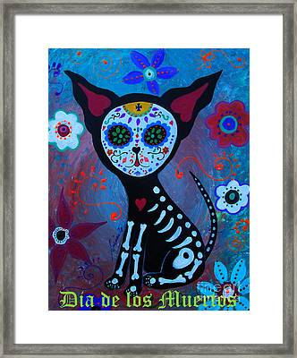 El Perrito Day Of The Dead Framed Print