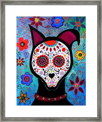 El Perro Day Of The Dead Framed Print