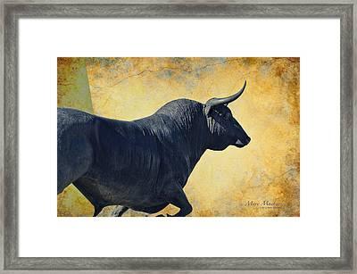 El Toro  Framed Print by Mary Machare