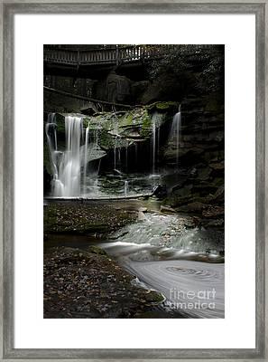 Elakala Falls On The Elakala Trail Framed Print by Dan Friend