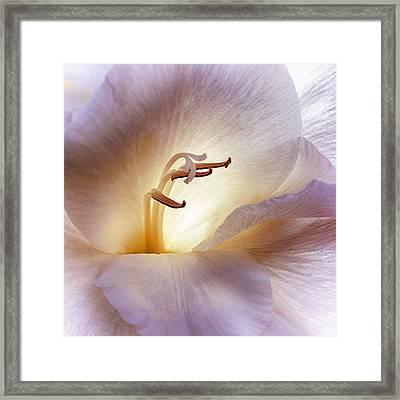 Elan Vital Framed Print by Darlene Kwiatkowski