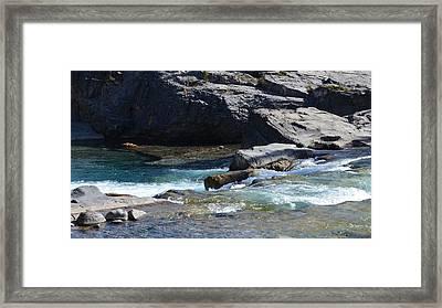 Elbow Falls Landscape Framed Print by Cheryl Miller