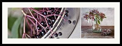 Black Berries Mixed Media Framed Prints