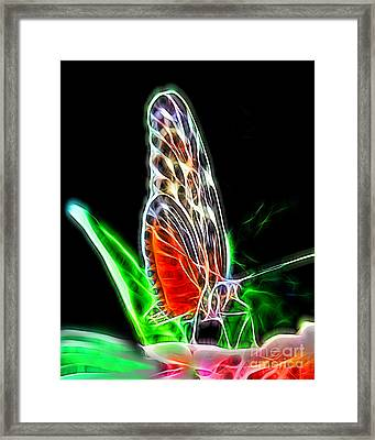 Electric Butterfly Framed Print