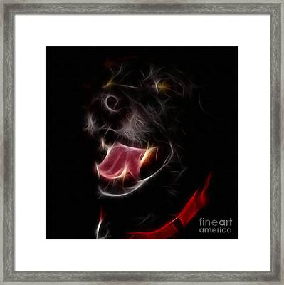 Electric Canine Framed Print by Barbara Griffin
