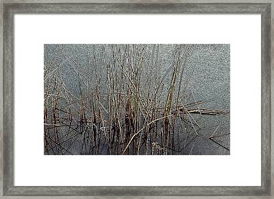 Electric Dreamscape Framed Print by Steven Milner