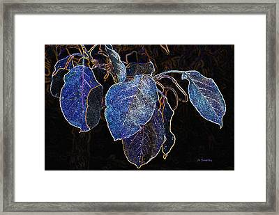 Electric Leaves Framed Print by Joanne Smoley