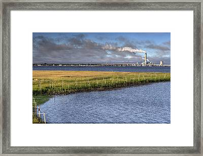 Electric Plant Framed Print by Al Hurley