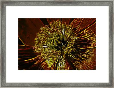 Electric Poppy Framed Print by Photographic Art by Russel Ray Photos