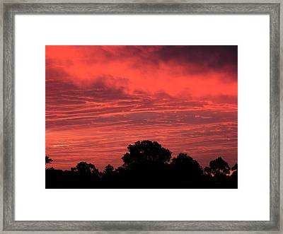 Electric Red Framed Print