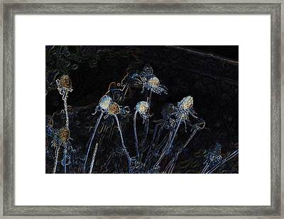 Electric Stems Framed Print by Don Durante Jr
