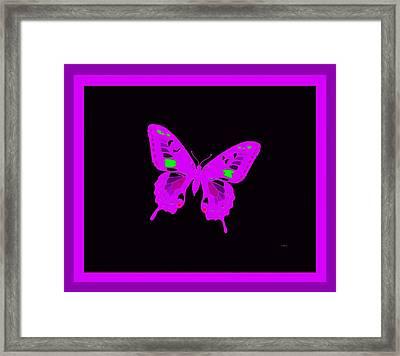 Electric Violet Butterfly Framed Print