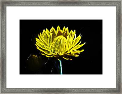 Electric Yellow Framed Print by Photographic Art by Russel Ray Photos