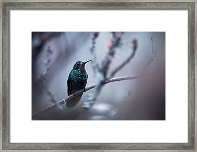 Electrical Blue Framed Print