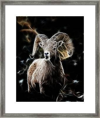 Electrified Ram Framed Print by Steve McKinzie
