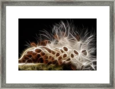 Electrifying  Framed Print