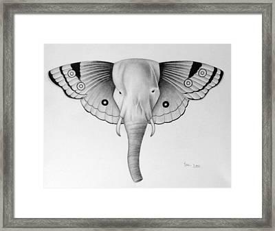 Elefly Framed Print