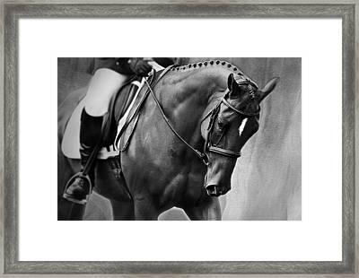 Elegance - Dressage Horse Framed Print