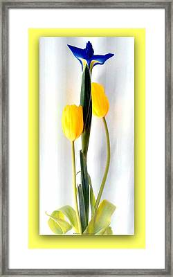 Elegance In Bloom Framed Print by Michelle Frizzell-Thompson