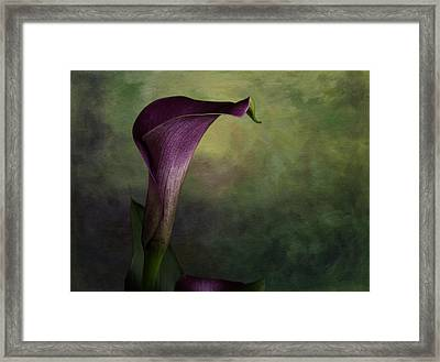 Framed Print featuring the photograph Elegance In Simplicity by Kristal Kraft