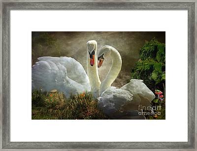 Elegance Paired Framed Print
