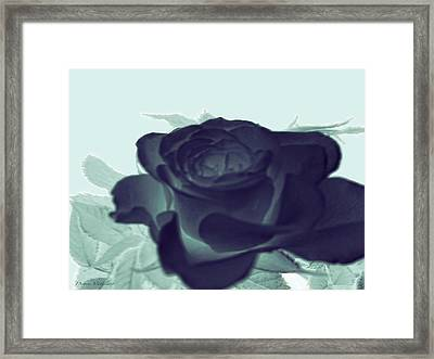 Elegant Black Rose Framed Print by Debra     Vatalaro