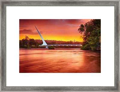 Elegant Dawn Framed Print by Randy Wood