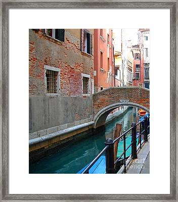 Elegant Decay Framed Print
