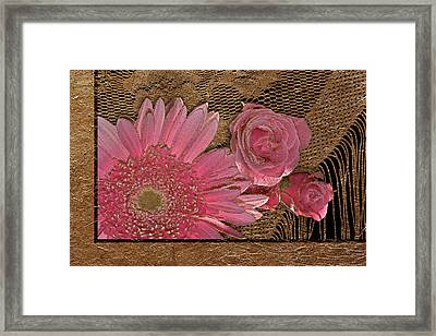 Elegant Gold Lace Framed Print